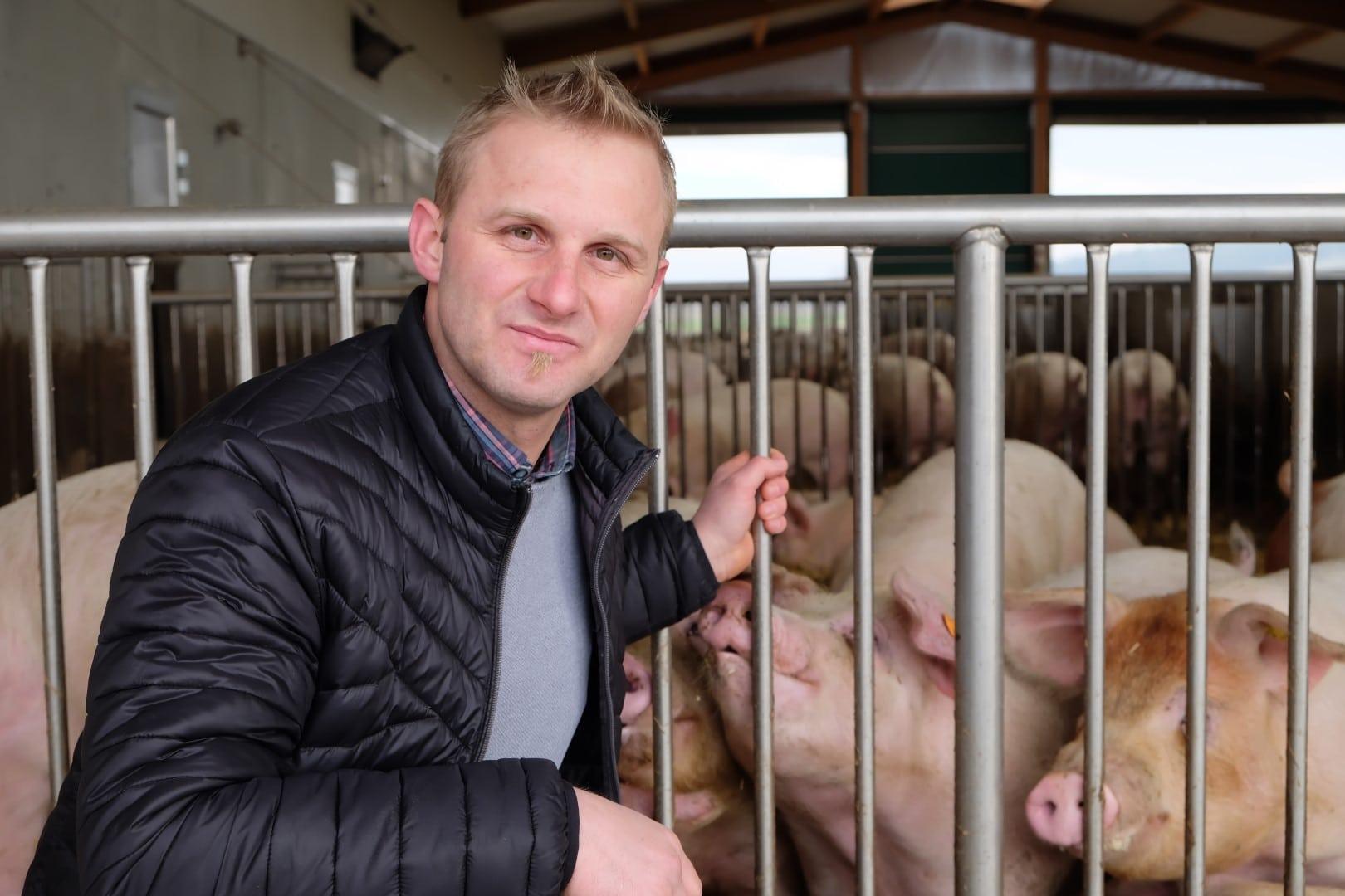 Markus Brankl mit optimal gefütterten und zufriedenen Schweinen im Stall.