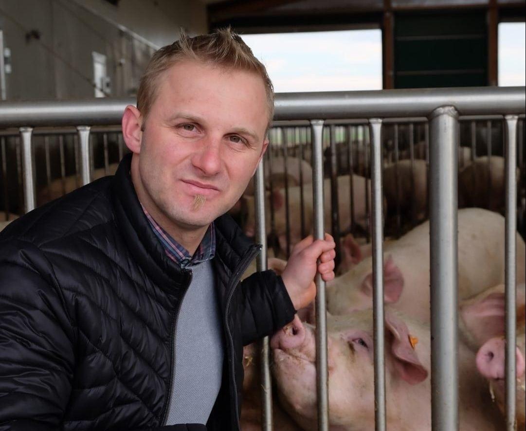 Markus Brankl im Stall mit Jungschweinen.
